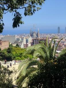 La Sagrada Familia in the Distance