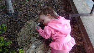 This is what Lila does when she loves something. She loved this rock.