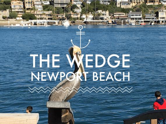Newport Beach Timelapse 8