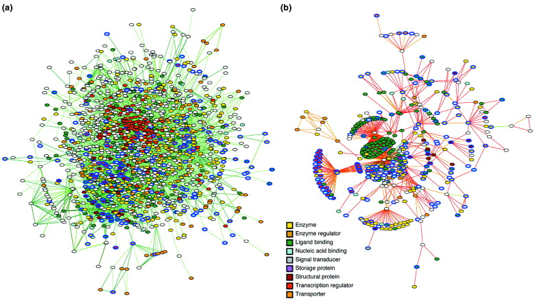 Figure 1. Comparison of predicted protein networks for E. coli. (a) Protein pairs and their mutual information scores based on phylogenetic profiling were used to generate a network for E. coli. Figure generated using data from [4, supplementary information] (b) Protein interactions were predicted using Bioverse [7] based on finding pairs of proteins similar in sequence to proteins from a database of experimentally determined interactions. Figure generated using data from Bioverse (http://bioverse.compbio.washington.edu). For both networks, nodes representing proteins are colored based on their gene ontology (GO) [19] category and the 220 proteins present in both networks are outlined in blue. Edges represent the predicted relationships between proteins [functional linkages in (a) and protein interactions in (b)] and are colored by confidence (a) or mutual information score (b).