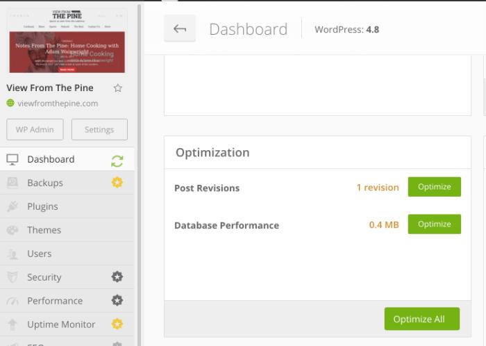 Manage WP Optimization