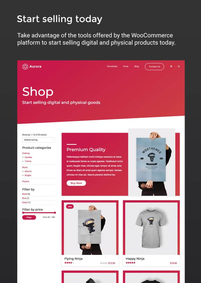 Aurora WordPress Theme + WooCommerce