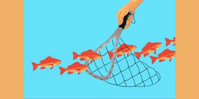 Think Before You Fish for Bargains in Chinese Stocks