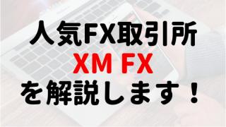 サラリーマンおすすめ副業ランキング1位の人気FX取引所「XM」について解説します。