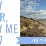 new year new me 2017 blog header - Yearly Wrap-Up, School Stories + Book Hauls!