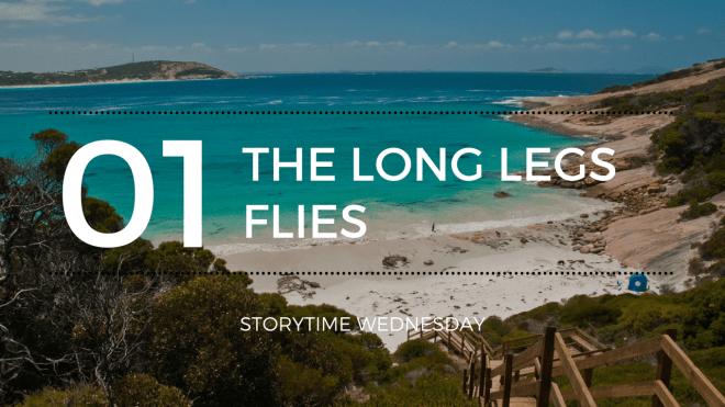 the long legs flies 1 blog header - Long Legs Flies (Short Story)