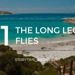 the long legs flies 1 blog header - March Wrap-Up + Huge Book Haul!