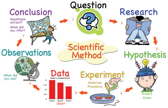 Resultado de imagen para using the scientific method