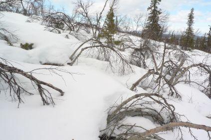 Snösluttning
