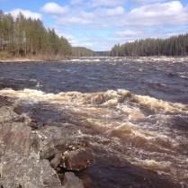 Vy från stenpiren uppströms forsen ovanför Mestoslinkka