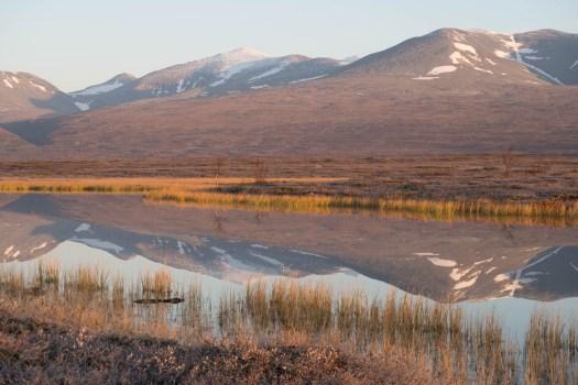 Bårdde |Pårte fjällen speglar sig i en liten sjö.