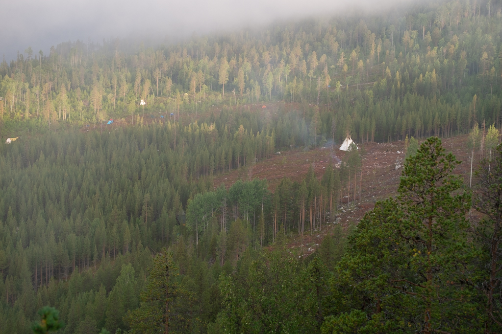 Teepe på ett kalhygge. Fotot taget från ett berg