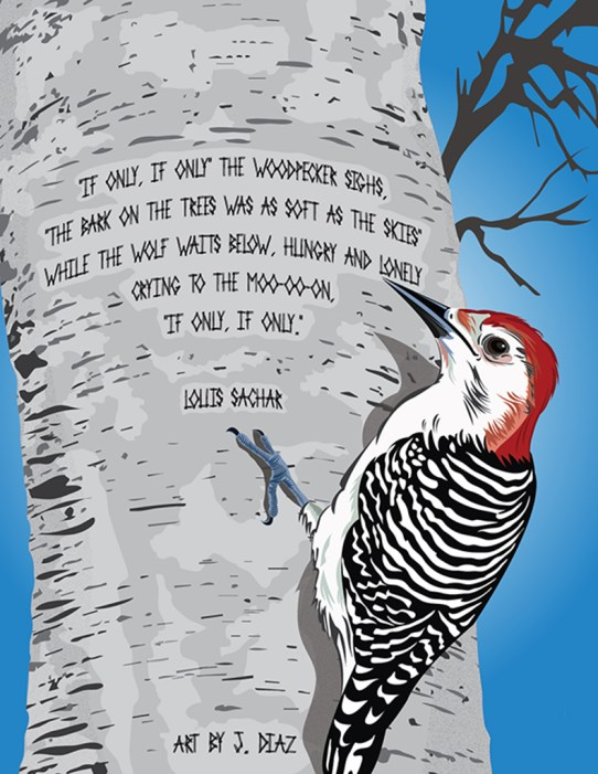 Javier Diaz Service learning woodpecker