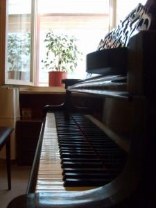 Piano de Cola Ibach - Javier Tucat Moreno - Berlin