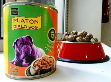 """Platón para perros"", libro objeto, medidas variables"