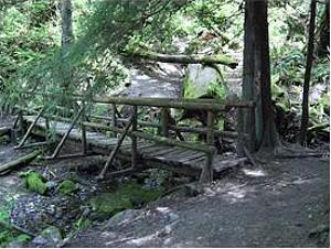 Cougar Mountain (Bellevue)