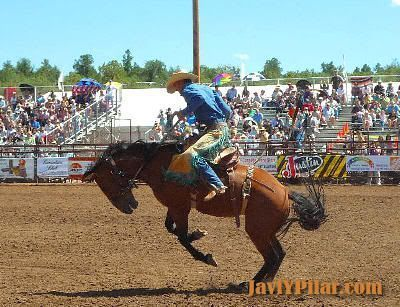 Rodeo en Payson (Arizona) en 2009