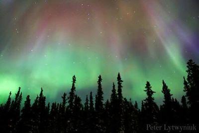 Aurora boreal vista desde el Yukón