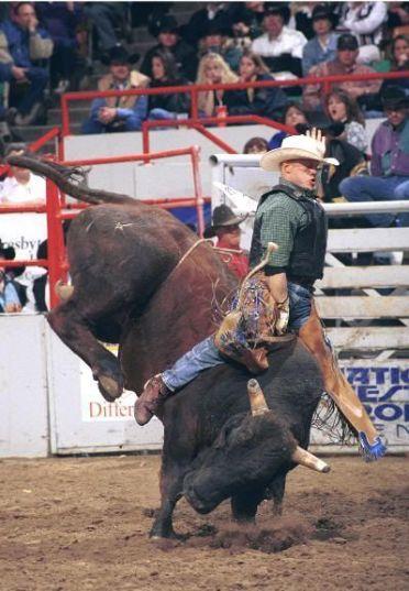"""Montando al toro (""""bull riding""""), una de las pruebas estrella del rodeo"""