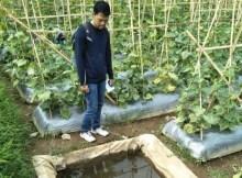 lahan tampungan air untuk umum
