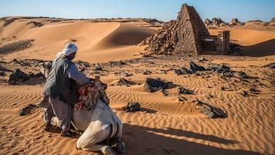 Photo of راعي سوداني شهم  يكافئه سعودي بمنزل وحجة و السبب …
