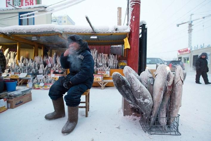 أسماك متجمدة في سوق ياكوتسك