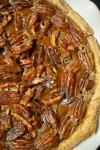 closeup pumpkin pie with pecans