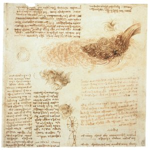 Leonardo da Vinci - comparing hair and water in his attempt to understand flow of water.