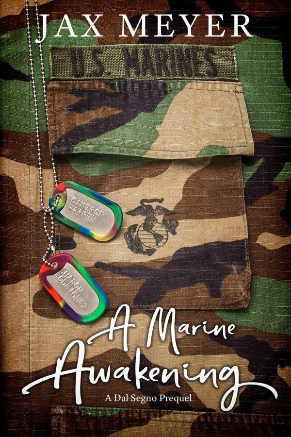 A Marine Awakening Cover