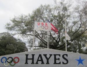 hayes 4
