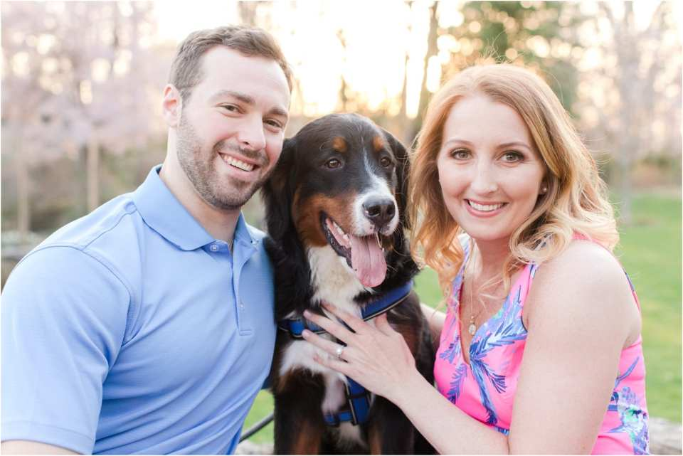 incorporating dogs into your engagement photo sessions