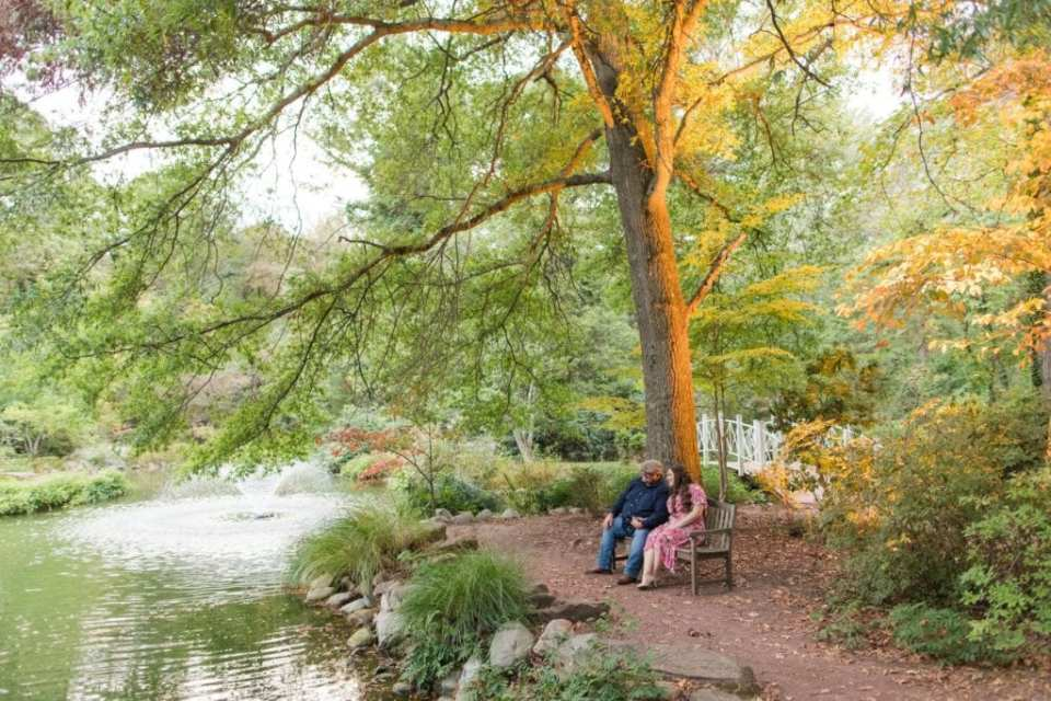 Wide angle photo of the engaged couple sitting on a bench amongst the slightly fall foliage at Sayen Gardens