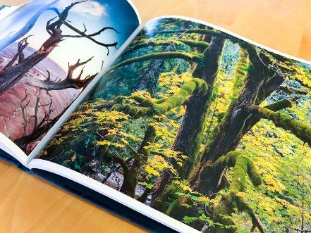 then-now-fine-art-photo-book-9