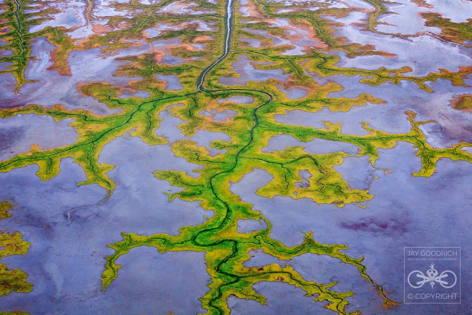 Whiskey Sierra Pop Abstract Alaska by Jay Goodrich