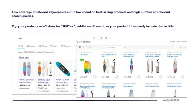 Searush Performance marketing Audit Preview