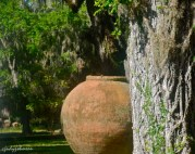 "I love this huge ""pot"" on the grounds of the home."