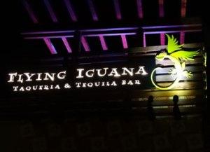 Flying Iguana signage