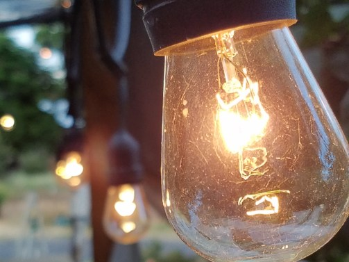 Lightbulbs Landscape - this one won a contest!