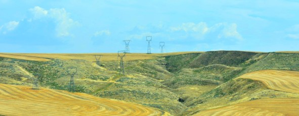 Wheatfields and Electricity