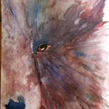 Watercolor Brown Bear