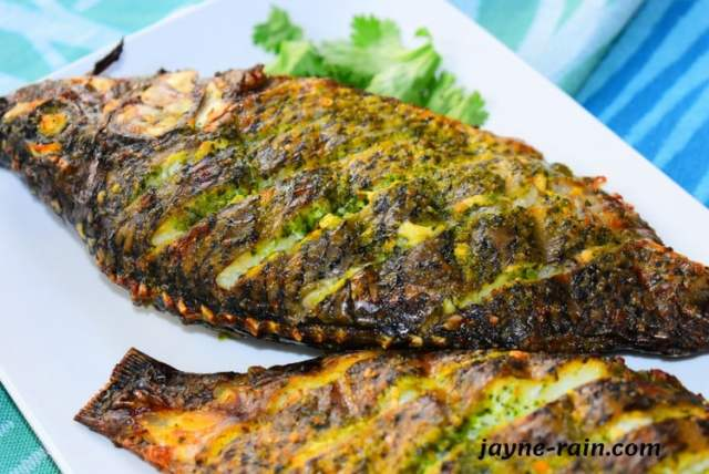 oven grilled tilapia fish