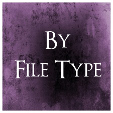By File Type