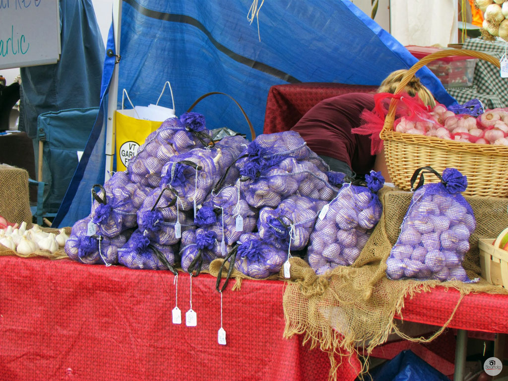 1st Trip - Vermont Garlic Festival