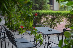 Hotel Burja Haveli Alwar_5