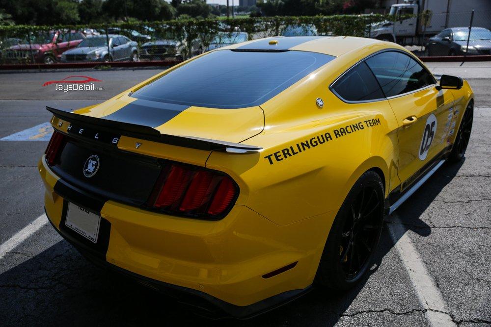 2016 Terlingua Mustang