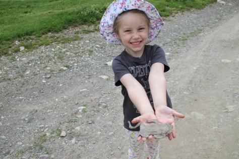 znaleziona w Ushguli płaska żaba