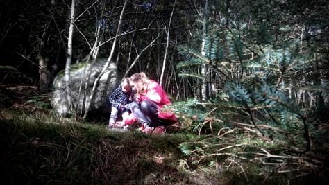 leśne szukanie keszy w okolicach Sandnes