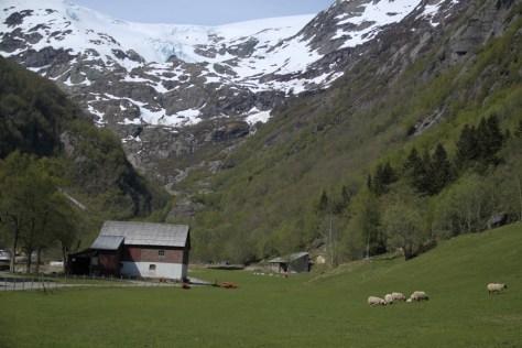 dolina Buardalen