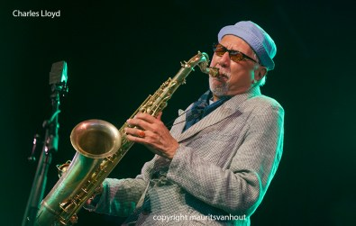 Charles Lloyd gefotografeerd op Jazz Middelheim 2013