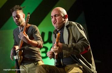 Belgrade jazz 2013, fish in oil